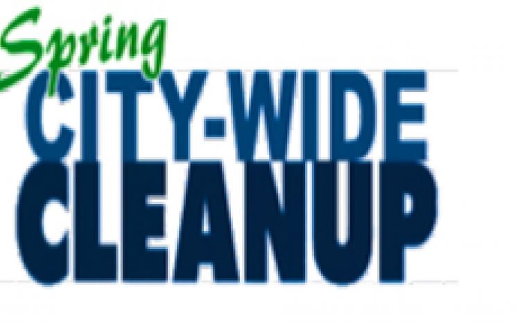 City Wide Clean-up day